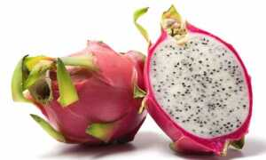 Питахайя (питайя, драконий фрукт, драгонфрут)