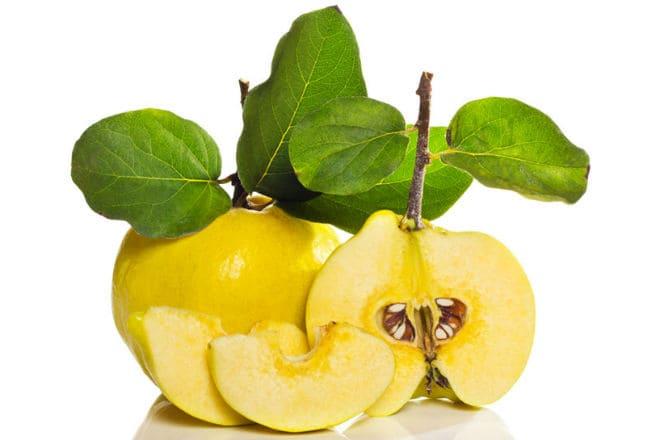 Плоды фрукта айва
