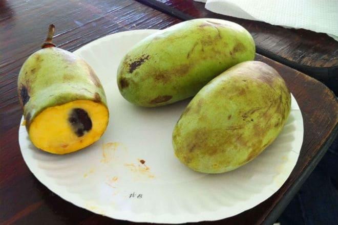 Плоды Пау-Пау