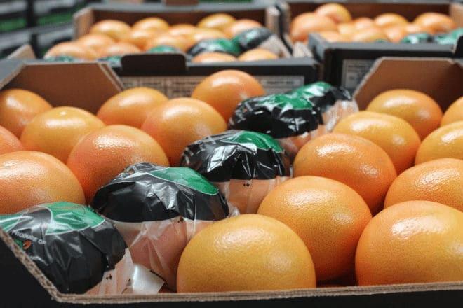 Хранение и транспортировка плодов грейпфрута