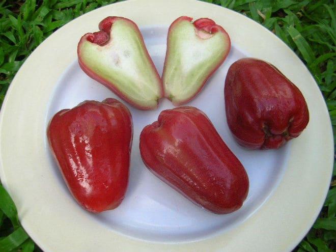Как едят плоды розового яблока?