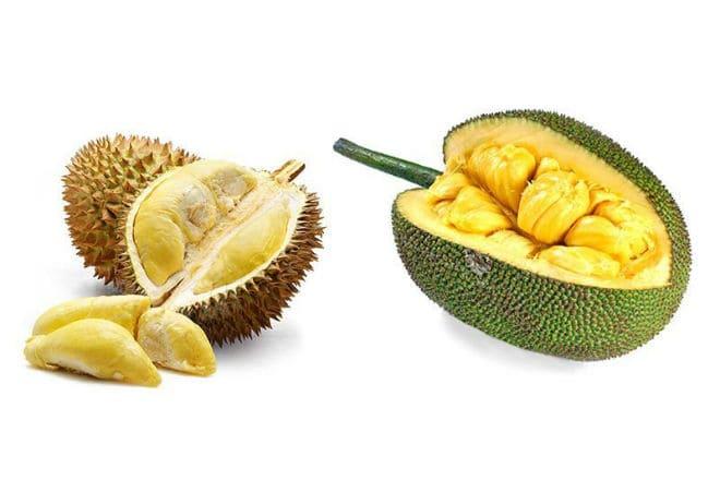 Чем отличается джекфрут от дуриана?
