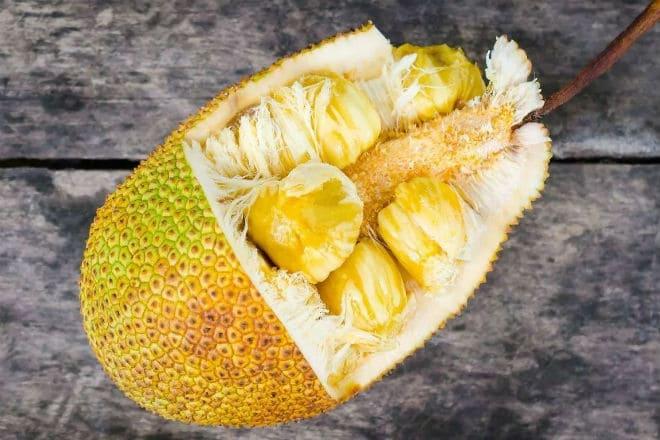 Плод индийского хлебного дерева в разрезе