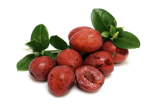 Плоды кариссы (комнатной сливы)