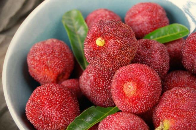 Плоды китайской клубники