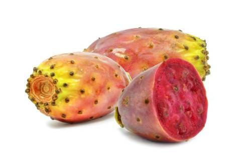 Как выглядят плоды опунции?