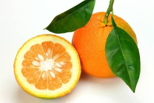 Плоды цитруса чинотто