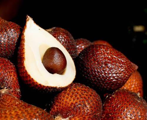 Плод салака в разрезе