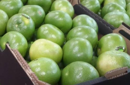 Плоды свити в коробке