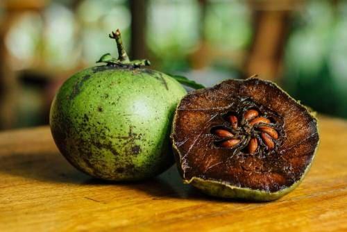 Плод черной хурмы в разрезе
