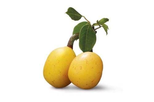 Как выглядит фрукт марула