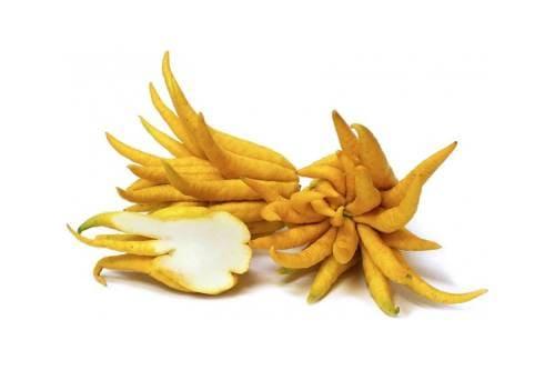 Как выглядит фрукт Рука Будды